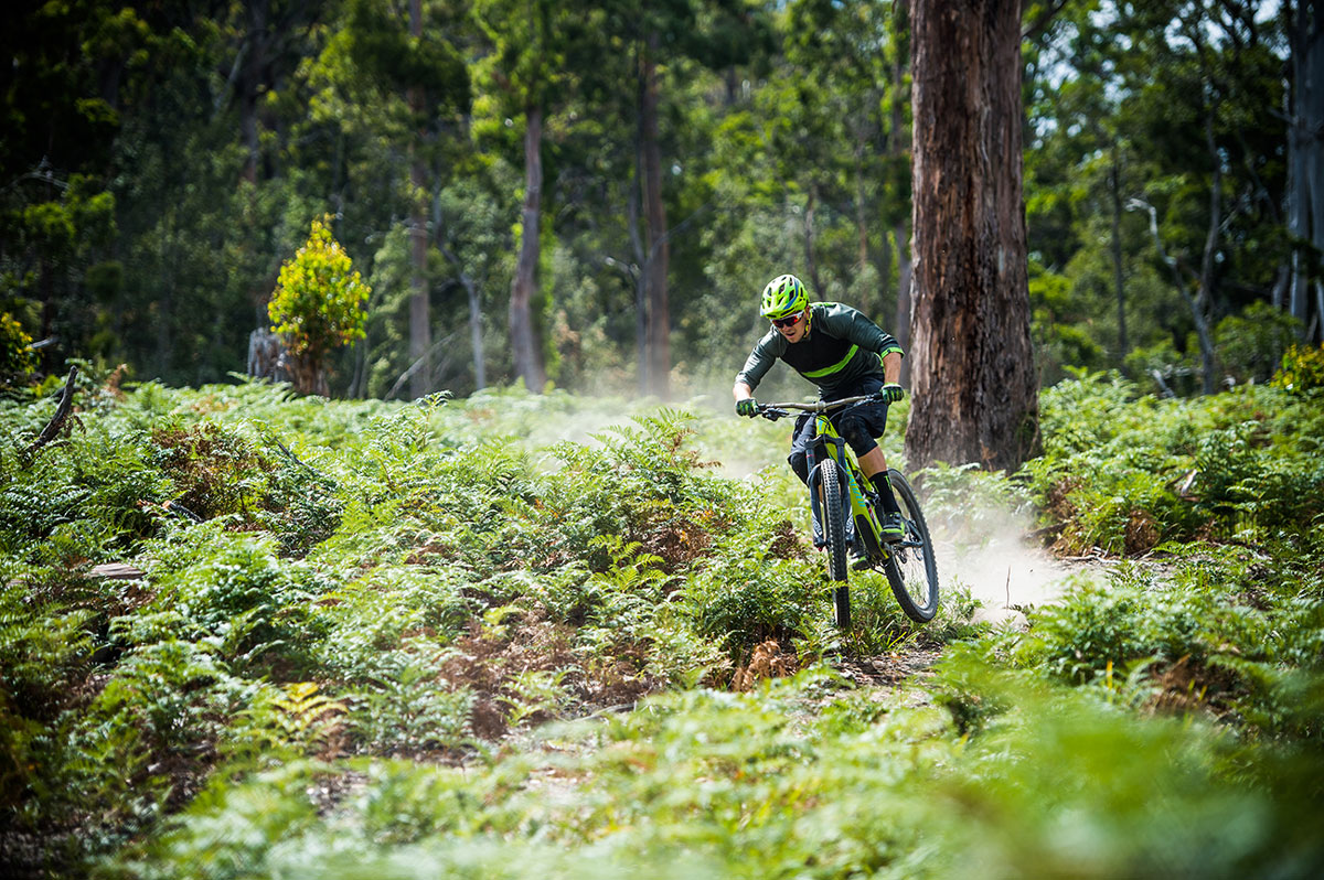 Vilken typ av mountainbike passar mig? Sportson Svarar